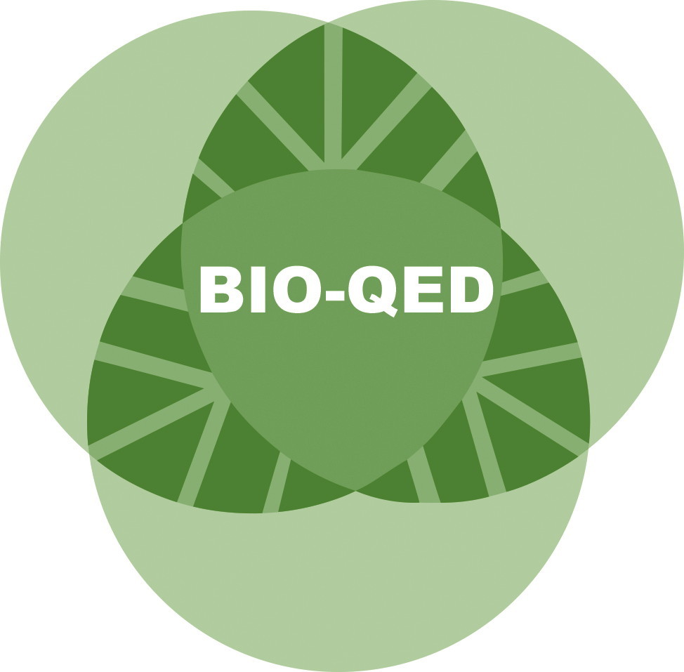 Project Overview Bio Qed Wiring Diagram 13 03 27 Logo Bioqed